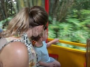 A bordo do Walt Disney World Railroad rumo à Fantasyland